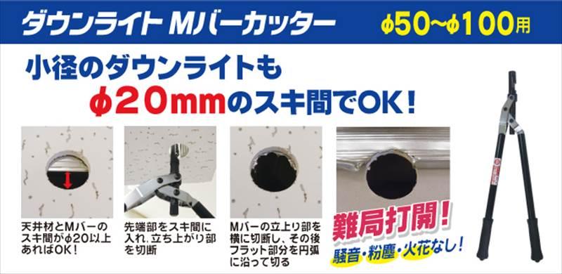 mdc-50111.jpg